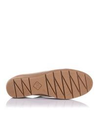 Zapato deportivo piel cordones Giorda 27863