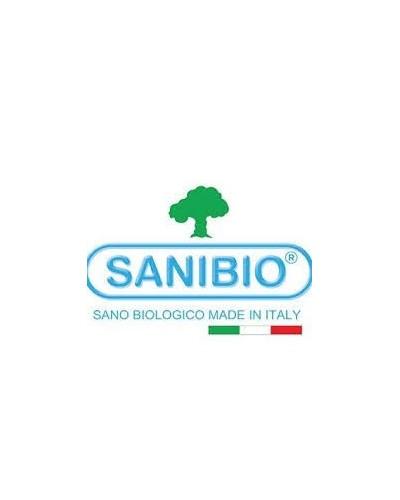sanibio zuecos